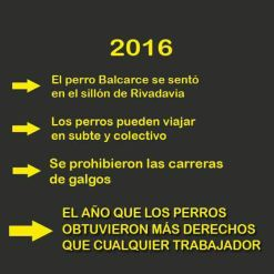 whatsapp-image-2016-11-22-at-6-49-57-pm