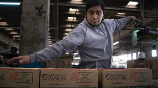 zanon-800x445