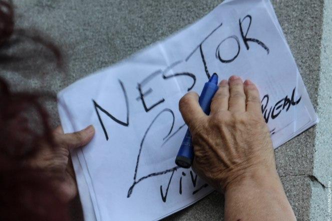 nestor-22