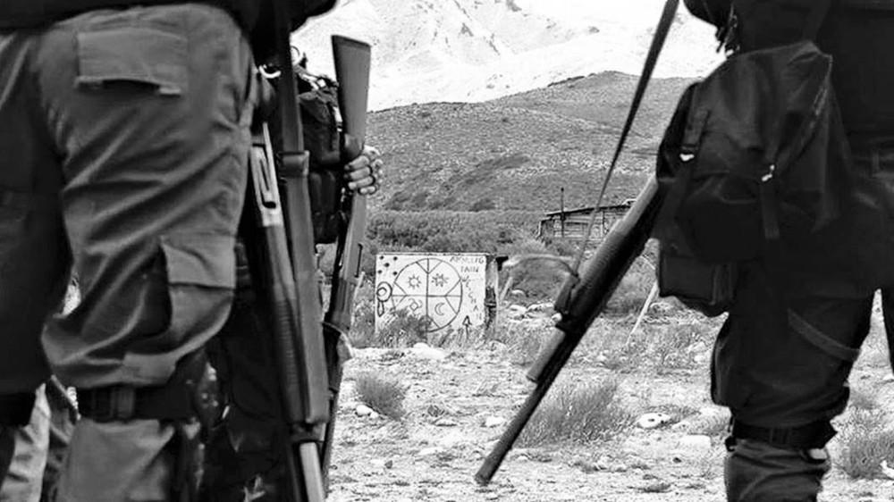 gendarmeria-represion-cushamen.jpg