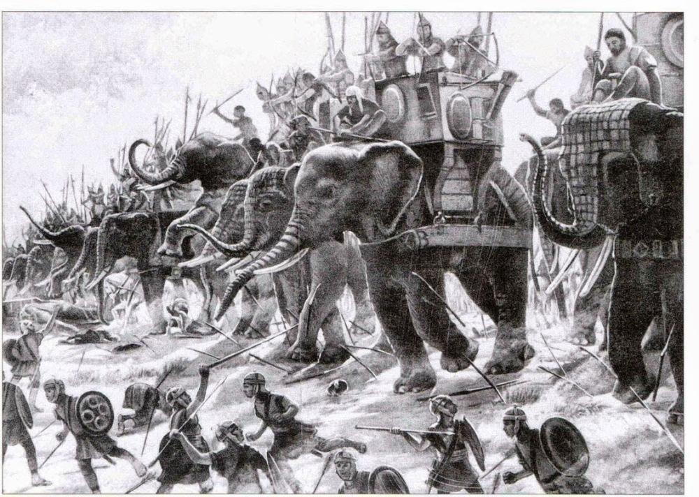 Elephantry.jpg